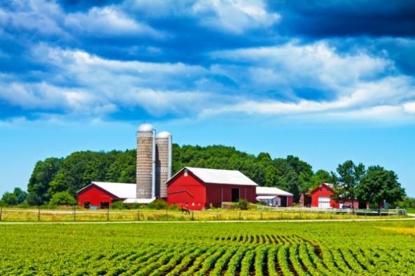 farmcitydays